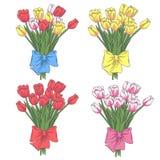 Vector set of tulip flowers. EPS10 Stock Photos