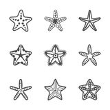 Vector set of various contour sea starfish Royalty Free Stock Image