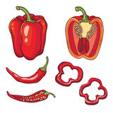 Vector set with vegetables: peppers  on white Stock Photography