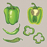 Vector set with vegetables: peppers Stock Photos
