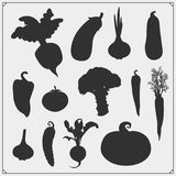 Vector set of vegetables silhouettes isolated on white background. Black and white Royalty Free Illustration