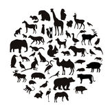 Vector set of very detailed animal silhouettes with name Stock Images