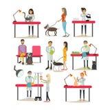 Vector set of vet clinic staff, clients, pets, flat design Stock Image