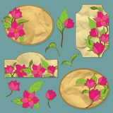 Vector set of vignettes with magnolia Stock Photo