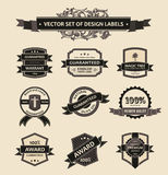 Vector set vintage decor elements ornaments ribbon Stock Image