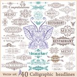 Vector set of vintage design elements Royalty Free Stock Photography