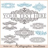 Vector set of vintage design elements Stock Photos