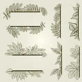 Vector set of vintage design elements with leafs Royalty Free Stock Photos
