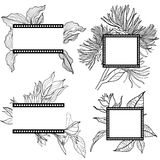 Vector set of vintage frames with flowers Royalty Free Stock Image