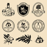 Vector set of vintage natural olive production logos. Retro hand sketched extra virgin oil signs with farm elements. Royalty Free Stock Photo