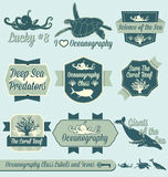 Vector Set: Vintage Oceanography Class Labels. Collection of retro style oceanography class labels and icons for back to school in college and in high school Royalty Free Stock Photography