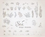 Vector set of vintage sea life design elements. Stock Image