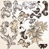 Vector set of vintage swirls for design Stock Image
