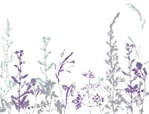 Vector set of ink stamp of herbs. Stock Photos