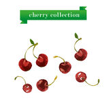 Vector set of watercolor cherry on white background. Stock Photography