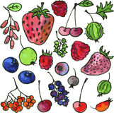 Vector set of watercolor drawing cartoon berries Royalty Free Stock Image