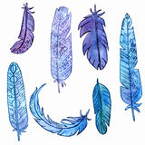 Vector set of watercolor feathers Stock Images