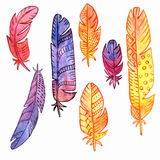 Vector set of watercolor feathers Royalty Free Stock Photos