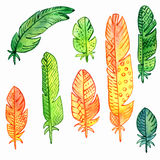Vector set of watercolor feathers Stock Photos