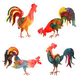 Vector set of watercolor fire cocks on white background. Royalty Free Stock Photography