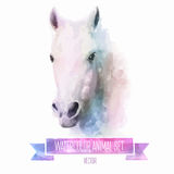 Vector set of watercolor illustrations. Cute horse Royalty Free Stock Image