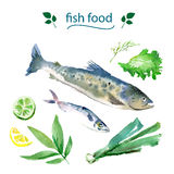 Vector set of watercolor sea food. Stock Images