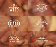 Set of typographic  compositions for t-shirt. Autumn blurred backgrounds Royalty Free Stock Image