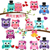 Vector Set of Wedding Themed Owls and Branches Royalty Free Stock Photography