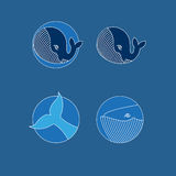 Vector set of whale icons. Vector set of whale contour icons Royalty Free Stock Photo