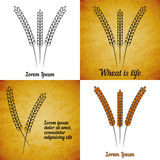 Vector set of wheat ears on different layers Royalty Free Stock Photos