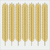 Vector set of wheat ears. Sketch of cereal for bakery and other design stock illustration
