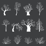 Vector Set of White Silhouettes of Bare Trees and Bushes without Leaves Stock Photo