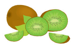 Vector set of whole kiwi fruit and his sliced segments, isolated on white background. Royalty Free Stock Photography