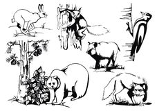 Vector set with wild animals Royalty Free Stock Image