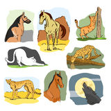 Vector set of wild and home animals. Hand drawn cartoon illustration. Horse, dog, cat, wolf, leopard Stock Photo