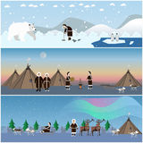 Vector set of wild north arctic posters in flat style. Stock Images
