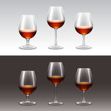 Vector Set of Wine Glasses on Background. Vector Set of Wine Glasses Isolated on Background Stock Photos