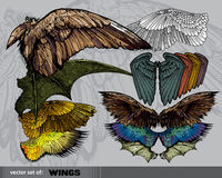 Vector set of  Wings Royalty Free Stock Photos