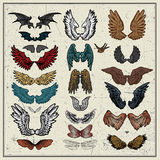 Vector set of wings. Isolated on light background Stock Images