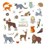 Vector set of woodland animals made in cartoon style. Royalty Free Stock Photography