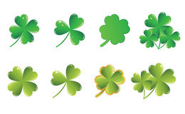 vector shamrock collection Royalty Free Stock Photos