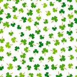 Vector Shamrock Grass Seamless Pattern. Happy Patrick Day Projects. Stock Photography