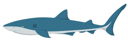 Vector Shark Stock Image