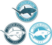 Vector shark logo illustration Stock Photo