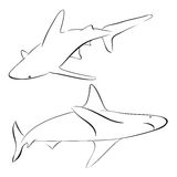 Vector sharks drawn in line art style Stock Photos