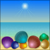 Vector shells illustration on the summer sea beach Royalty Free Stock Photos