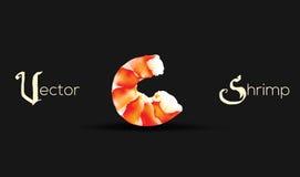 Vector Shrimp Seafood. Prawn illustration isolated on black background Stock Photos