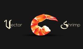 Vector Shrimp Seafood. Prawn illustration isolated on black background. Royalty Free Stock Photography