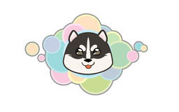 Vector siberian husky cute head. Vector illustration Dog `s head in cartoon style Royalty Free Stock Photos