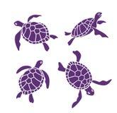 Vector sier oceaanschildpadden op de witte achtergrond royalty-vrije illustratie